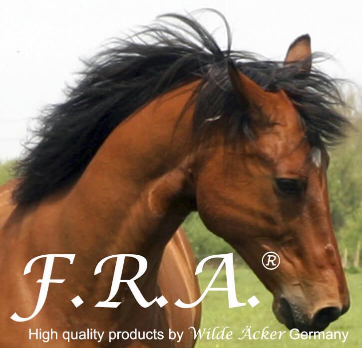 Groothandel paardensport