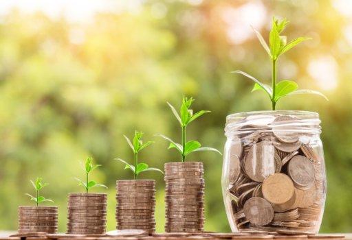Geld verdienen affiliate plant een zaadje