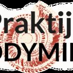 SEO optimalisatie voor het maximale bereikPraktijk Bodymind